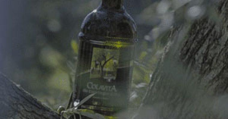 spot-colavita