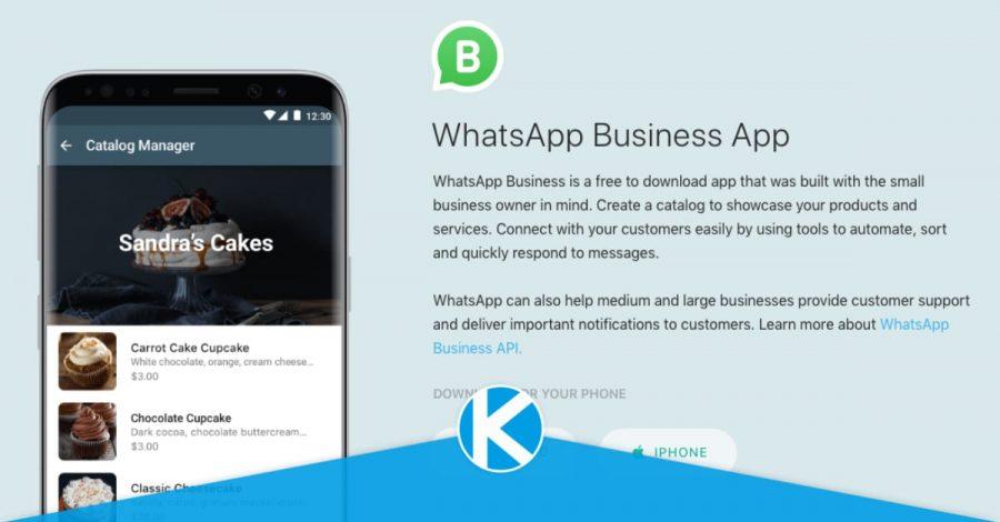 whatsapp-business-linkitb
